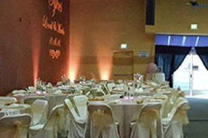 pink-wedding-2